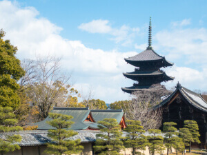 京都支部 ホームページ